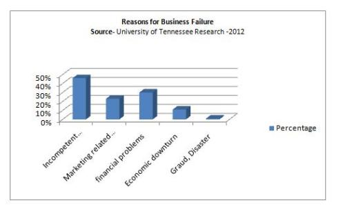 Reasons of Business Failure